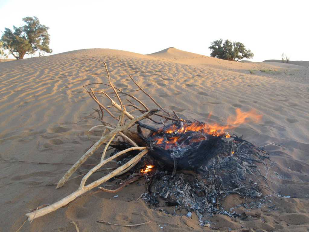 Day 9 - Hiking M'Goun and Sahara Visit