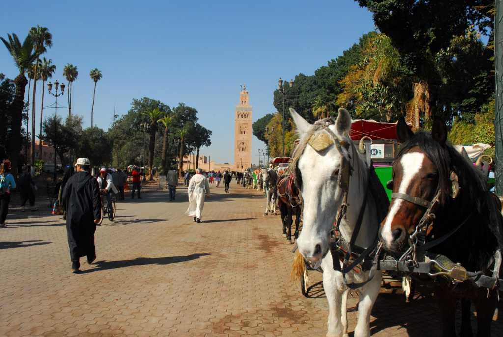 Jour 1 - Yoga et randonnée pédestre de Marrakech