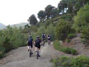 mountain bike decent