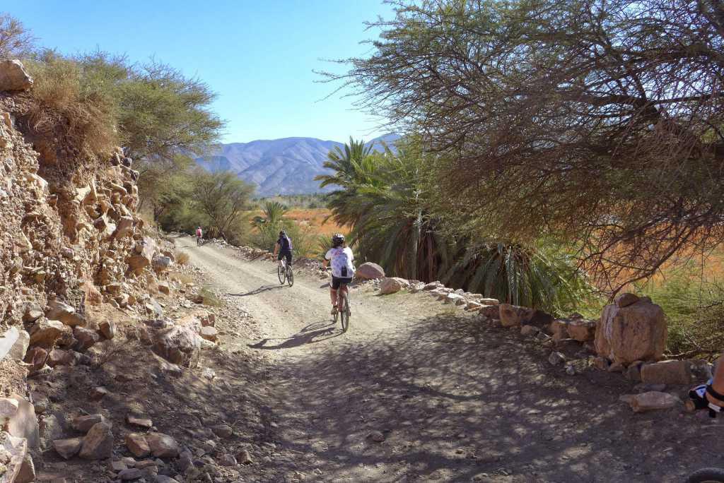 """Mountain biking """"The Great South"""""""