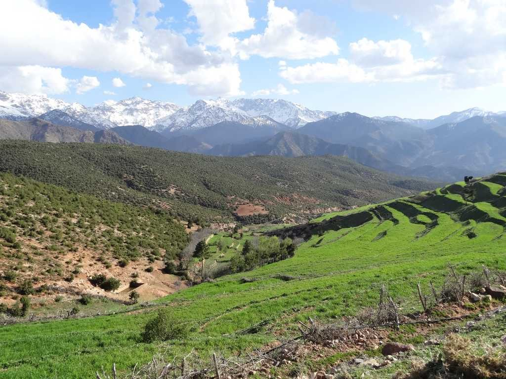 3 Berber Valleys – Marrakesh day trip