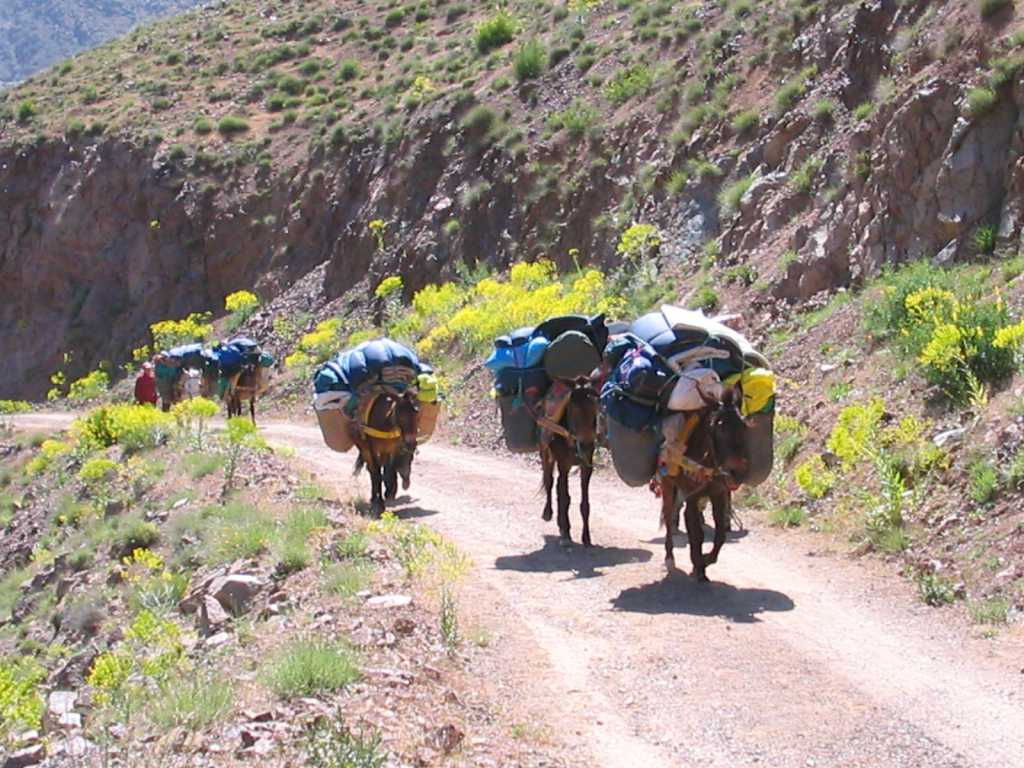 Day 1 - Weekly Toubkal Trek