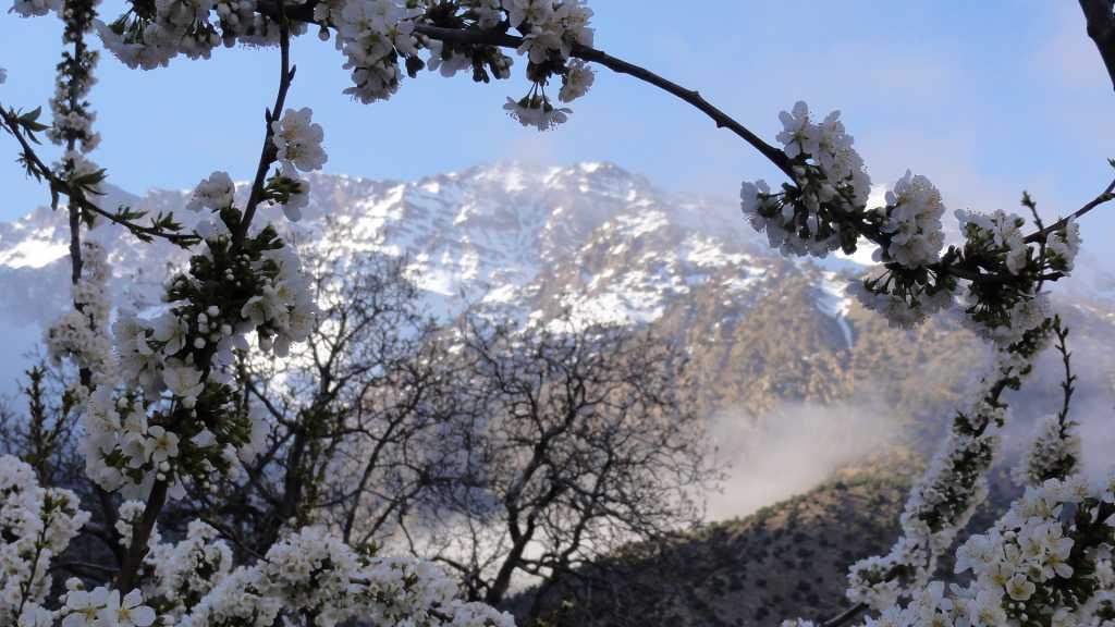 Day 5 - Tour Ski Toubkal